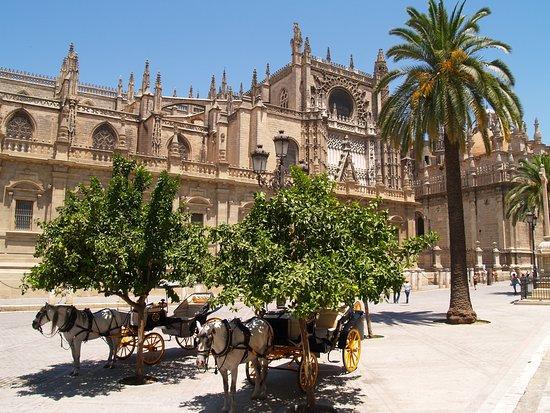 OWAY Tours Sevilla