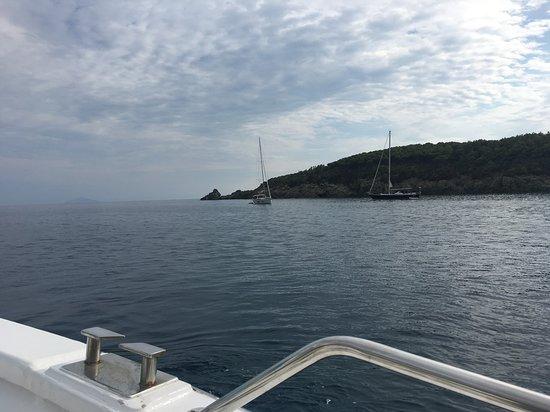 Fetovaia Isola d'Elba - Costa del Sole