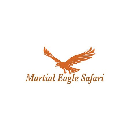 Martial Eagle Safari