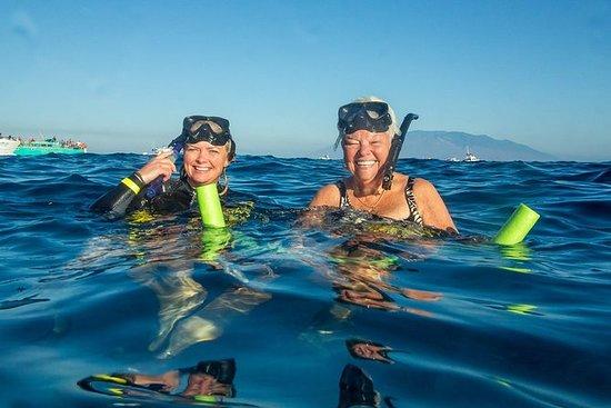 Molokini Wild Side: Snorkel og cruise...