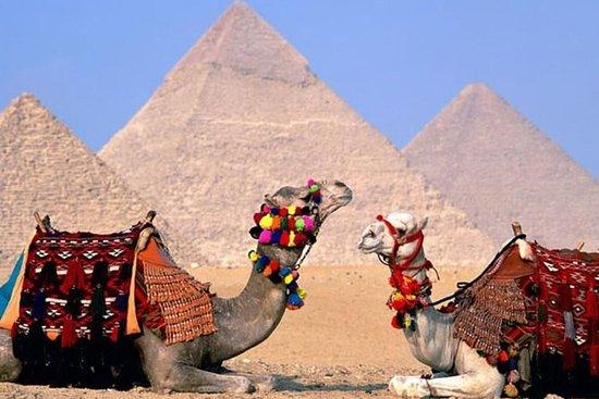 Excursión privada por el Nilo de 8...