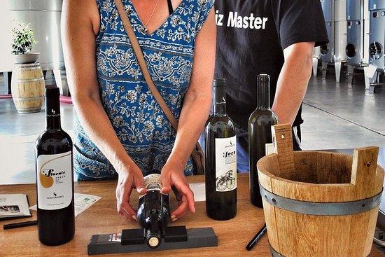 Authentische Erfahrung in Bio-Weingut