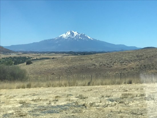 Shasta, CA: Beautiful off highway area to take s break.