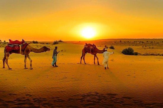 Desert Agafay & Atlas Mountains...