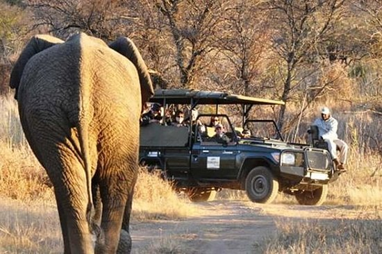 2 Days/ 1 Night - Dinokeng Safaris...