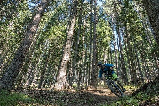 Mountain Bike Enduro Day in Pirin...