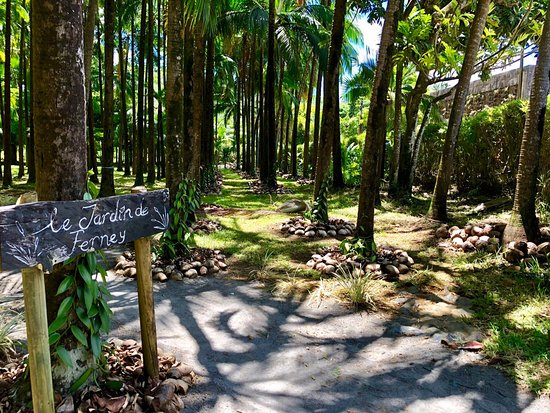Grand Port: Visit our endemic plant nursery