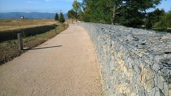 Poggio a Caiano, อิตาลี: Il muro... del pianto!
