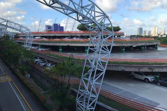 Recife Passeios