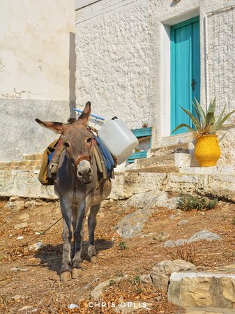 Lipsi, Yunanistan: Leipsoi Island