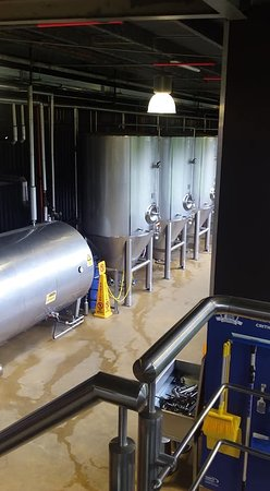 Tui Brewery: Vats of beer!