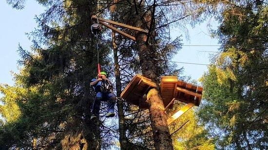 Tree Top Trials