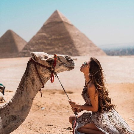 Signature Tours egypt
