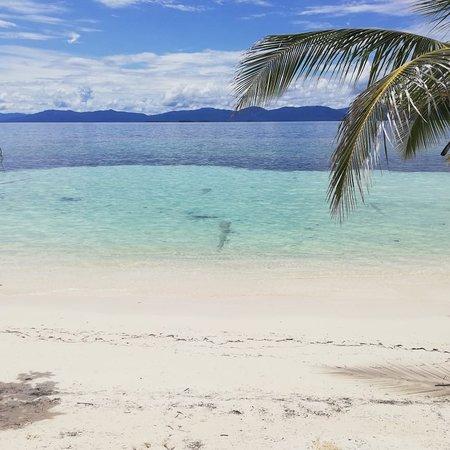 Masargantupo, Panama: Masargandup  Una isla familiar que recibe a todos los visitantes durante todo el año .  Senderismo Camping Tours Snorkeling Fogata Paseos en cayuco Voleibol de playa   Y lo más lindo de todo , estamos tan cerca de los cayos holandeses .