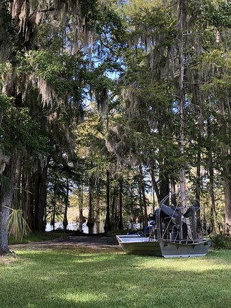 The Cove Pub and Grub: Air Boat Alley!