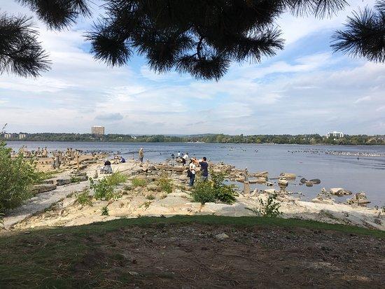 Remic Rapids Park