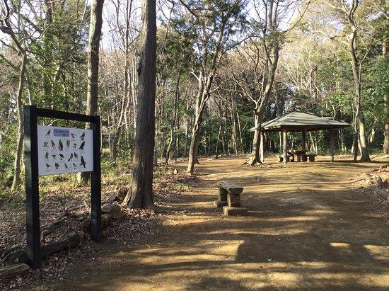 Kozukayama Park