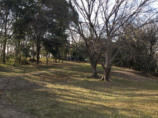 Horinouchi Kaizuka Shrine