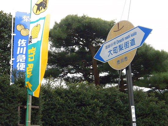 Omachi Nashikaido