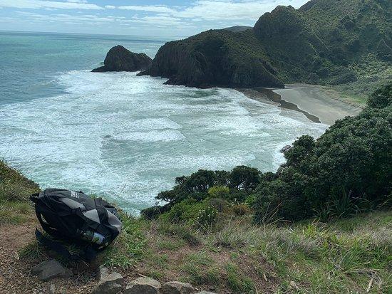תמונה מWaitakere Ranges Guided Walk from Auckland