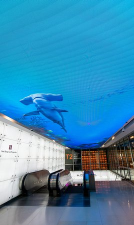 The MRT station in the ION Orchard looks like a shark tank