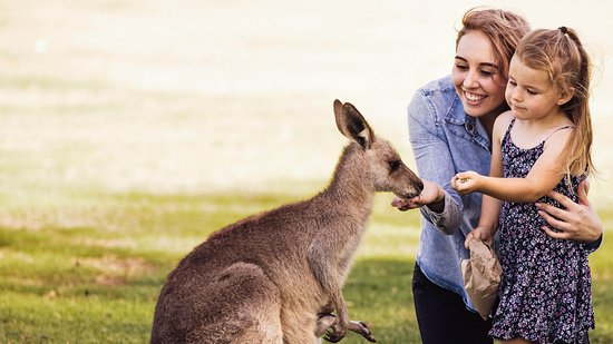 Explore Bobs Farm in the Port Stephens Region of New South Wales