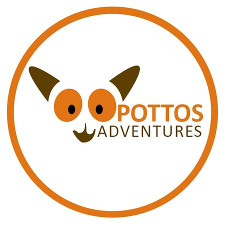 Pottos Adventures