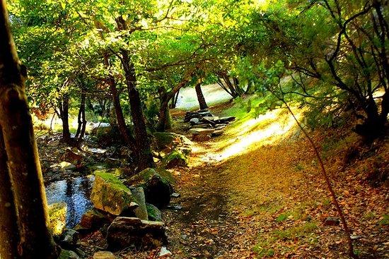 Drave, a vila mágica - passeio guiado a...