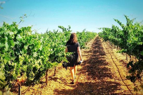 Descubra a autêntica cultura do vinho...