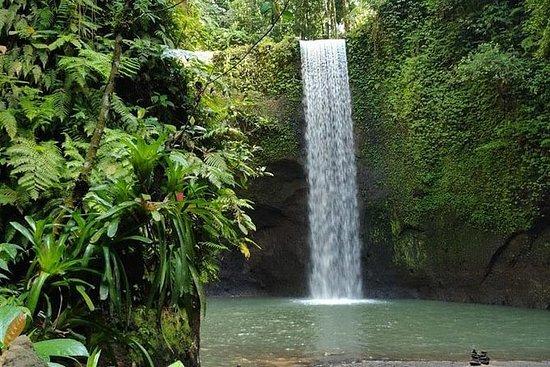 東バリの滝のある日