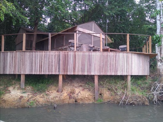 Gabon Wildlife Camps