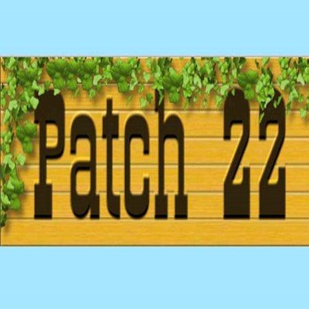 Patch 22