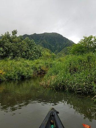 Rainforest River Trip