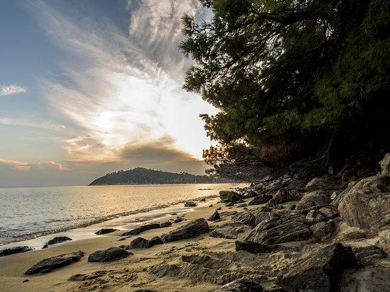 Un lembo di sabbia dorata sottile e abbracciato dai verdi pini e dalla profumata macchia mediterranea.  Maratha Beach a Skiathos ha una parte attrezzata e una zona libera, ottima per chi cerca tranquillità. Lo snorkeling nelle sue acque verdi smeraldo è stato eccezionale e il tramonto ci ha regalato dei bellissimi colori dorati.