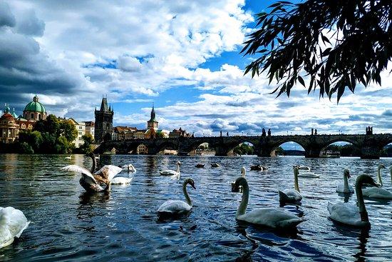 A Praga y vámonos