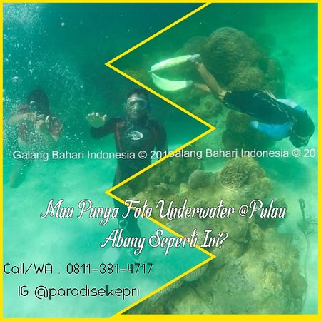 Photo Underwater at Abang Island.