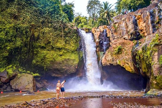 Ubud Village Tour con cascada...