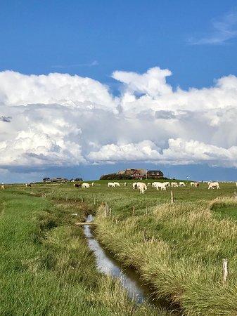 Foto de North Friesian Islands