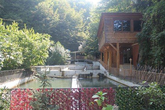 Nuzhetiye, Turkey: Doğa harikası