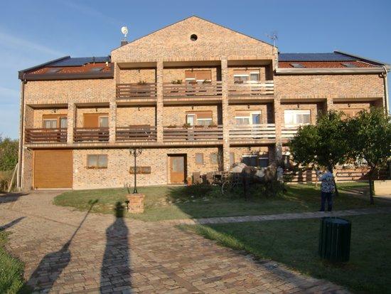 Kopacevo, Kroatia: From the courtyard