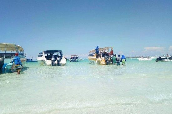 Pattaya: tour dell'isola del corallo in