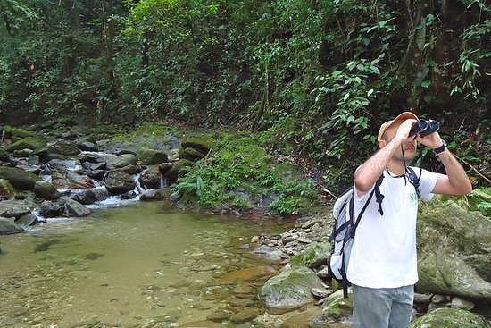 Experiencia Palomino Jungle