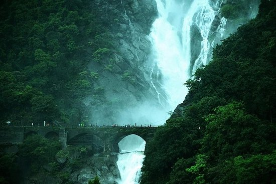 Dudhsagar Waterfall Day Tour fra Goa