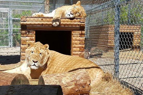 Tour degli animali esotici
