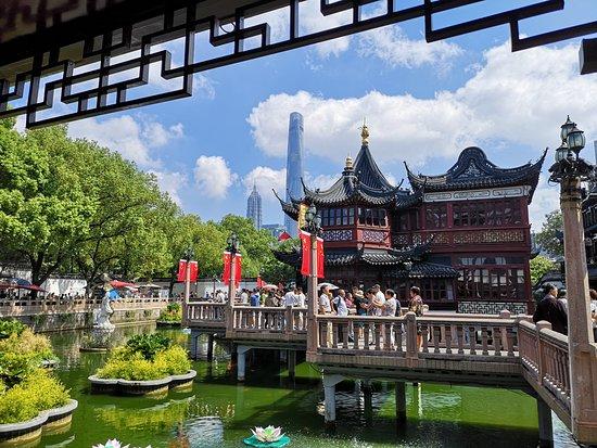 Shanghai Driver Guide