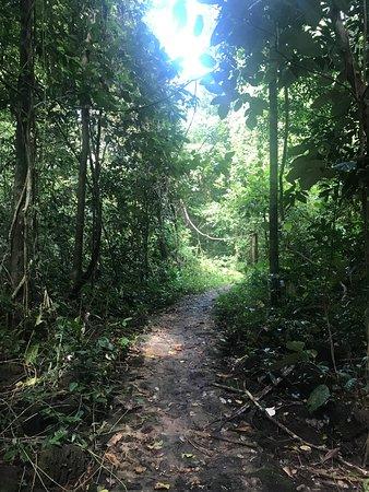 Tan Phu照片