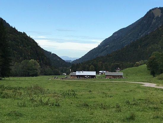 Die Alpe, vom E5 rückwärts gesehen.