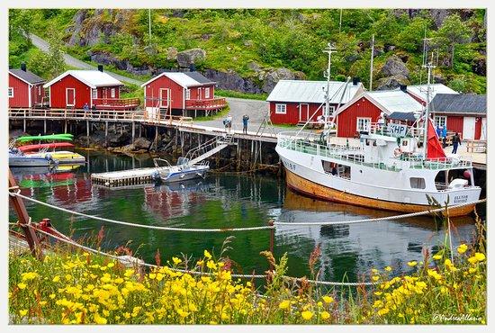 Nusfjord harbor