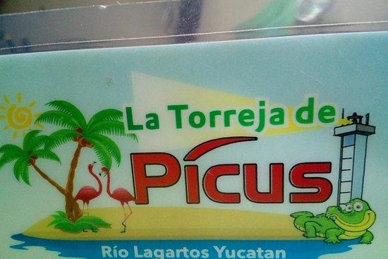 Foto de Río Lagartos
