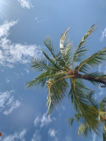 1ヶ月セブ島滞在の最後はクリムゾンに宿泊 リゾート気分を存分に楽しめました